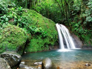Martinique-Waterfall-in-the-tropical-forest-martinique