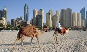 Dubai_foto mici (38 of 42)