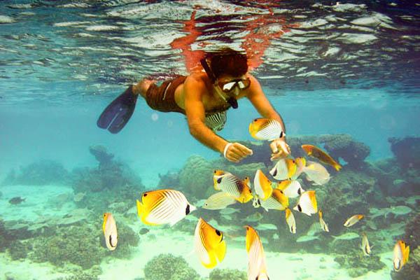 Swimming among the fish off the beach at the Raratongan
