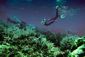 Solomon-Islands (3)
