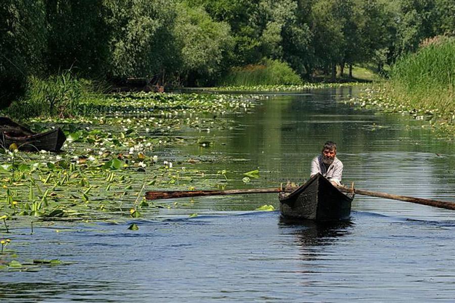 Parcul National Delta Dunarii (4)
